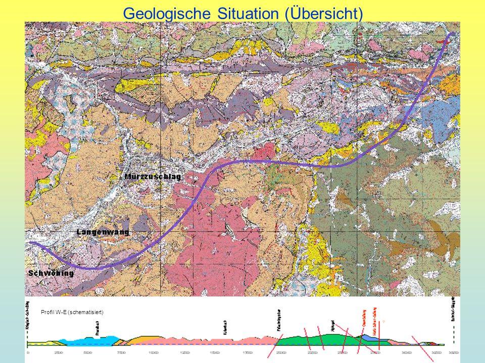 Geologische Situation (Übersicht) Profil W-E (schematisiert)