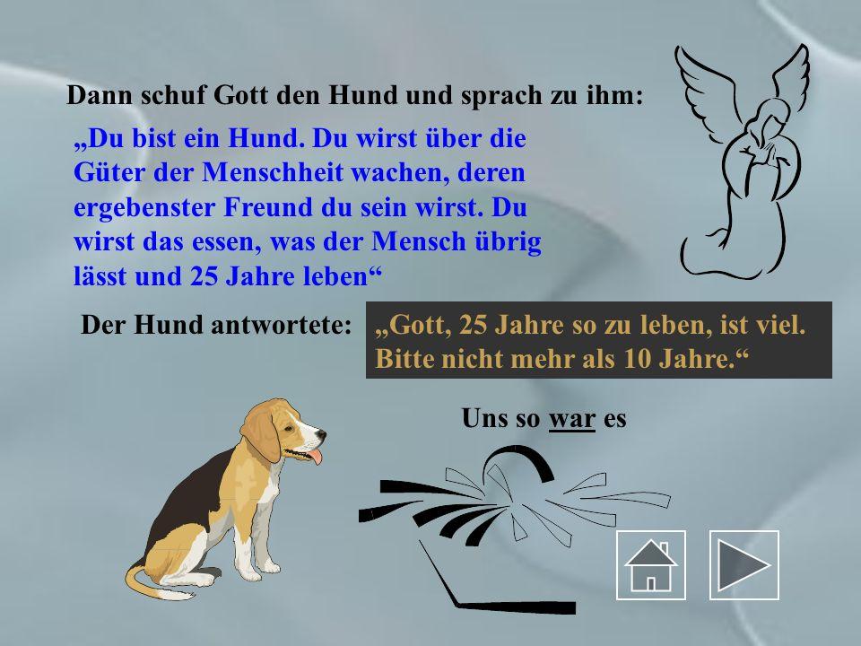 Dann schuf Gott den Hund und sprach zu ihm: Du bist ein Hund.