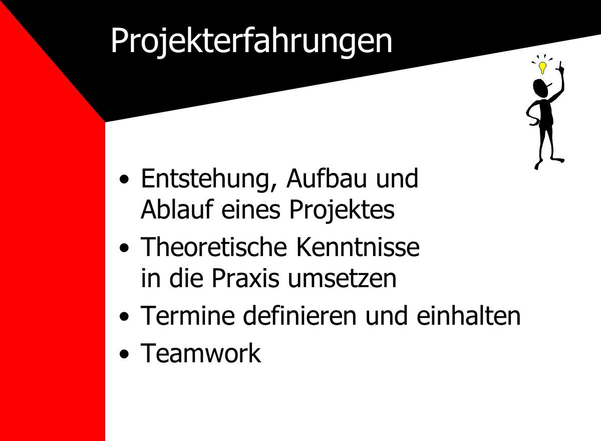 Projekterfahrungen Entstehung, Aufbau und Ablauf eines Projektes Theoretische Kenntnisse in die Praxis umsetzen Termine definieren und einhalten Teamwork