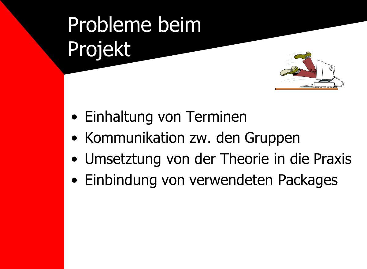 Probleme beim Projekt Einhaltung von Terminen Kommunikation zw.