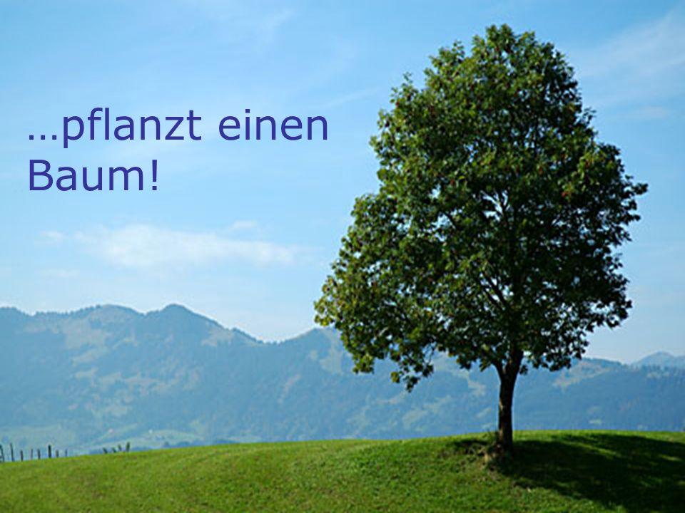 Energie – Lotz Georg – WS 07/08 …pflanzt einen Baum!