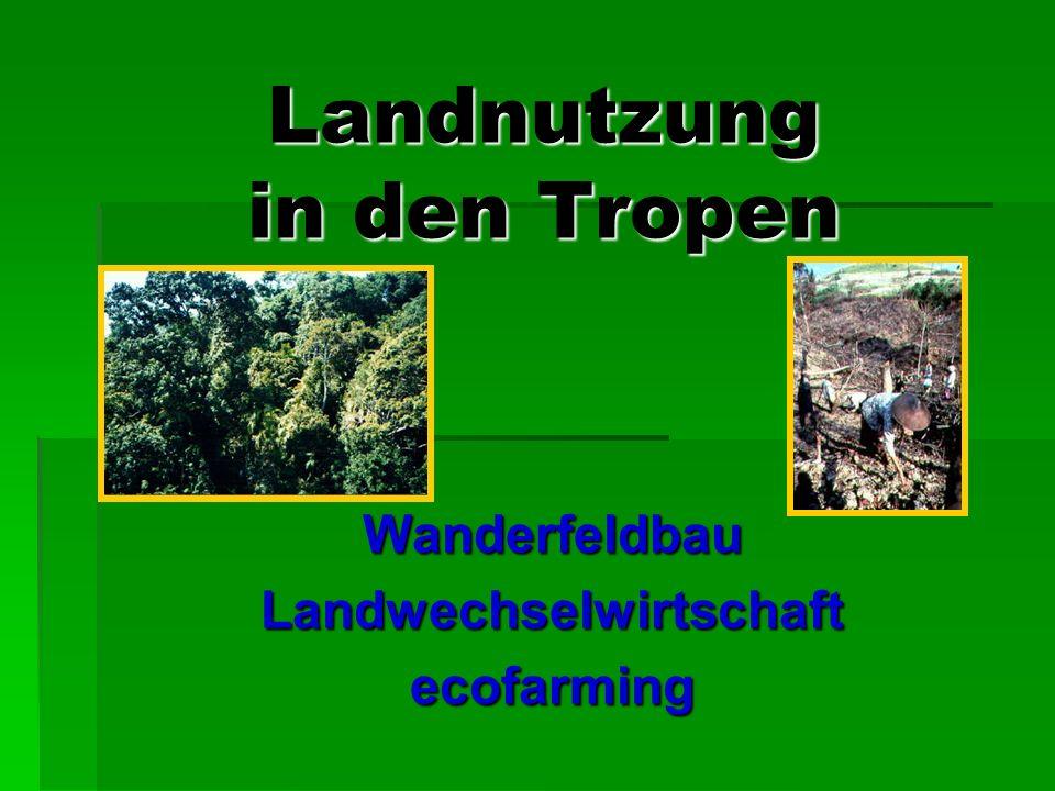 Landnutzung in den Tropen WanderfeldbauLandwechselwirtschaftecofarming