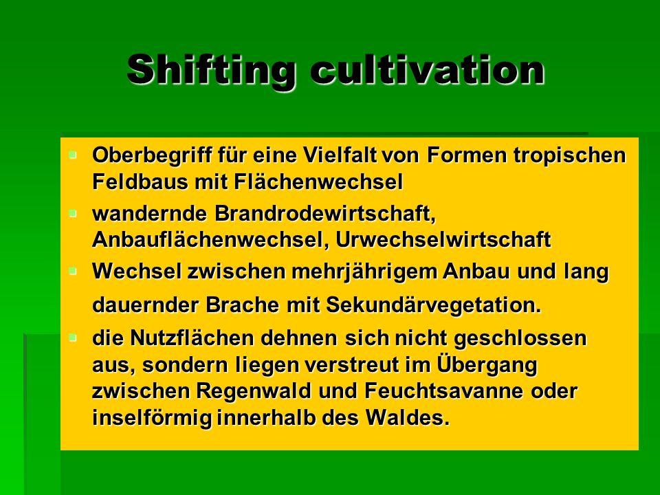Shifting cultivation Oberbegriff für eine Vielfalt von Formen tropischen Feldbaus mit Flächenwechsel Oberbegriff für eine Vielfalt von Formen tropisch