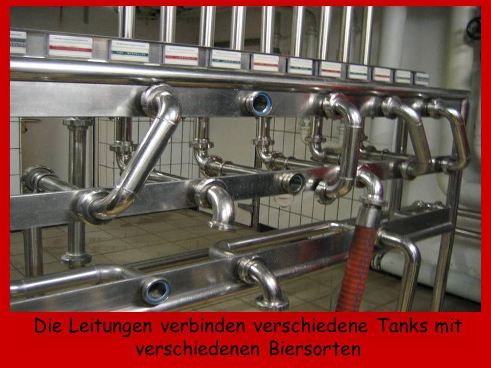 Die Leitungen verbinden verschiedene Tanks mit verschiedenen Biersorten