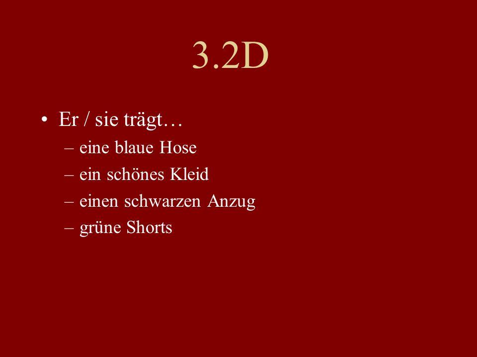 3.2D Er / sie trägt… –eine blaue Hose –ein schönes Kleid –einen schwarzen Anzug –grüne Shorts