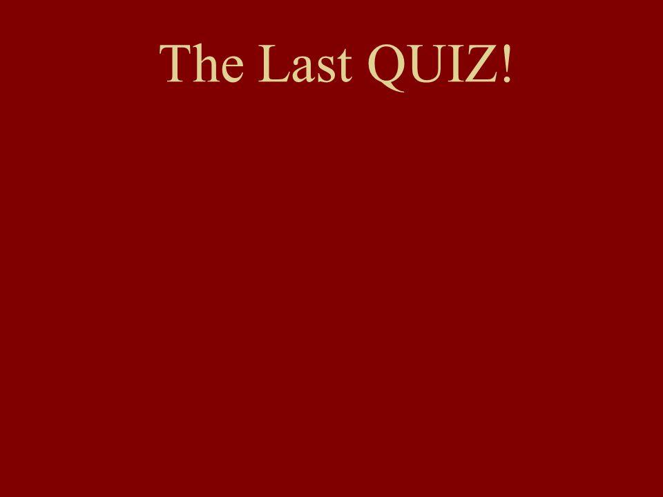 The Last QUIZ!