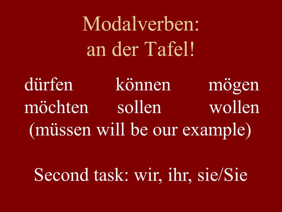 Modalverben: an der Tafel! dürfen können mögen möchten sollen wollen (müssen will be our example) Second task: wir, ihr, sie/Sie
