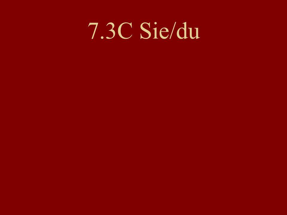 7.3C Sie/du