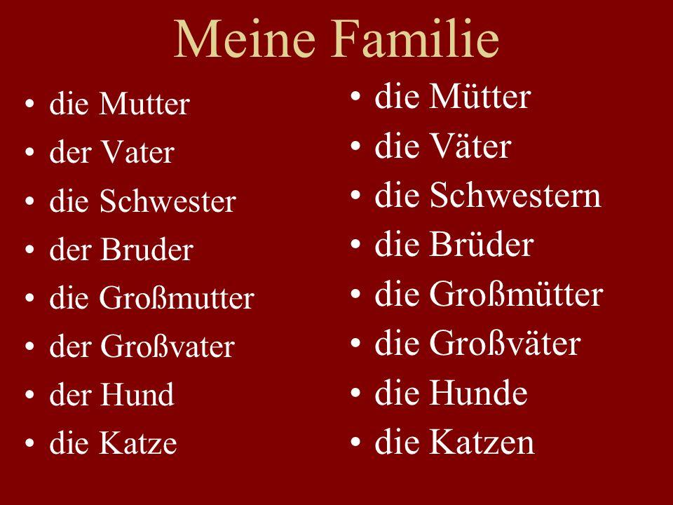 Meine Familie die Mutter der Vater die Schwester der Bruder die Großmutter der Großvater der Hund die Katze die Mütter die Väter die Schwestern die Brüder die Großmütter die Großväter die Hunde die Katzen