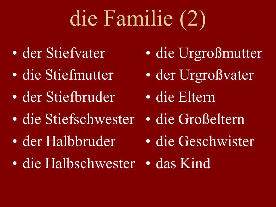 die Familie (2) der Stiefvater die Stiefmutter der Stiefbruder die Stiefschwester der Halbbruder die Halbschwester die Urgroßmutter der Urgroßvater die Eltern die Großeltern die Geschwister das Kind