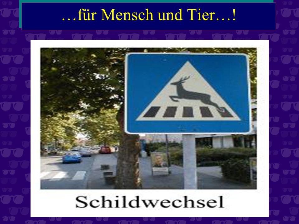 …und Warnung vor wirklich gefährlichen Strassen…!
