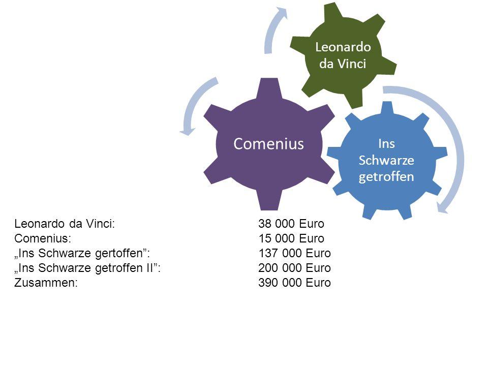 Ins Schwarze getroffen Comenius Leonardo da Vinci Leonardo da Vinci: 38 000 Euro Comenius: 15 000 Euro Ins Schwarze gertoffen: 137 000 Euro Ins Schwarze getroffen II:200 000 Euro Zusammen:390 000 Euro