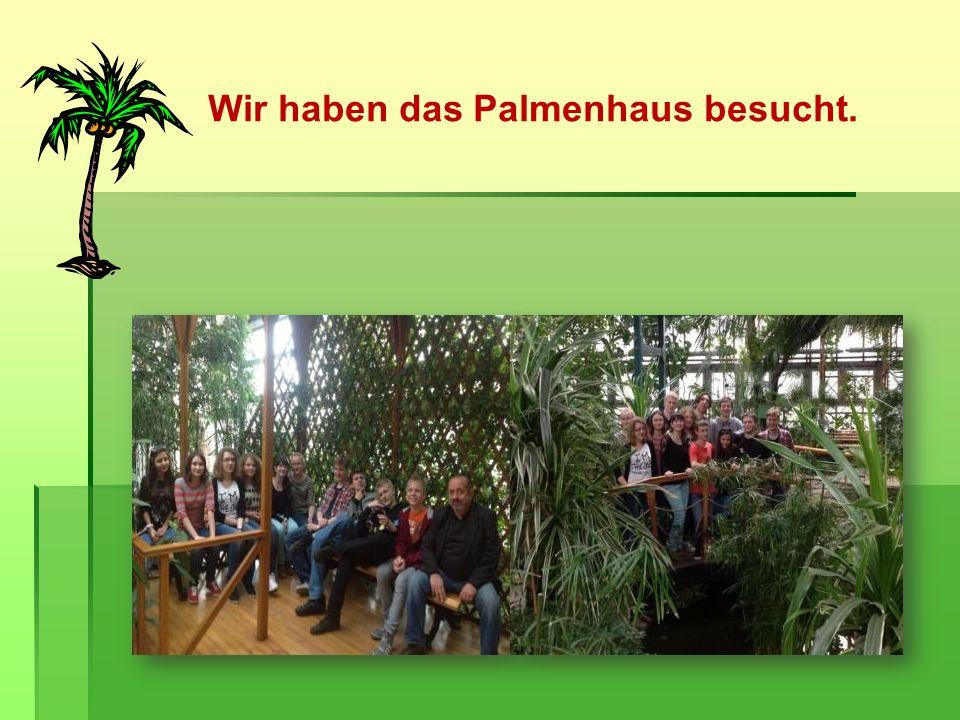 Wir haben das Palmenhaus besucht.