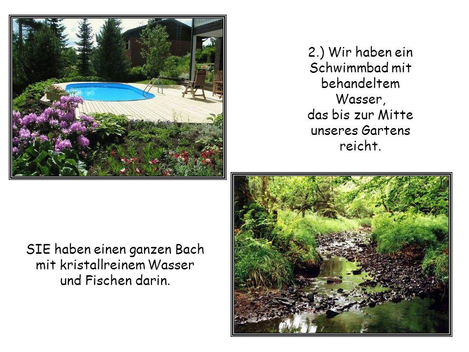 2.) Wir haben ein Schwimmbad mit behandeltem Wasser, das bis zur Mitte unseres Gartens reicht.