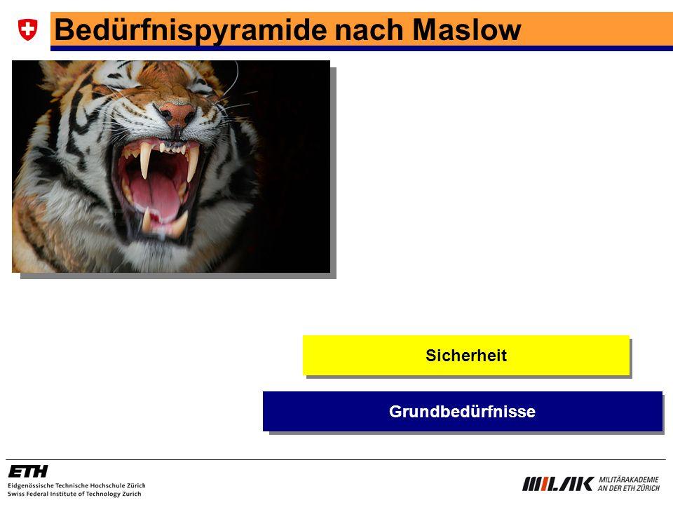 Bedürfnispyramide nach Maslow Sicherheit Grundbedürfnisse