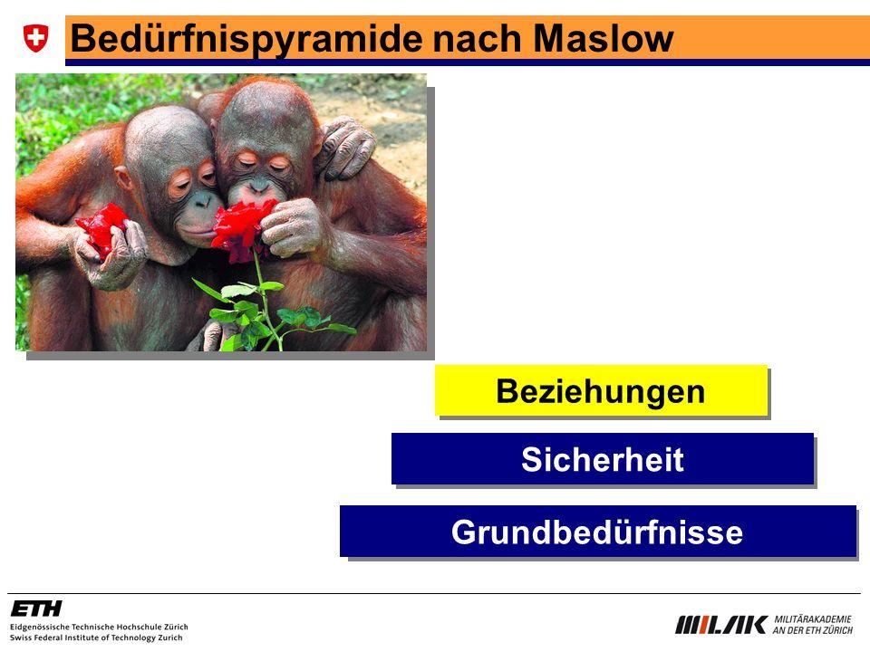 Bedürfnispyramide nach Maslow Sicherheit Beziehungen Grundbedürfnisse