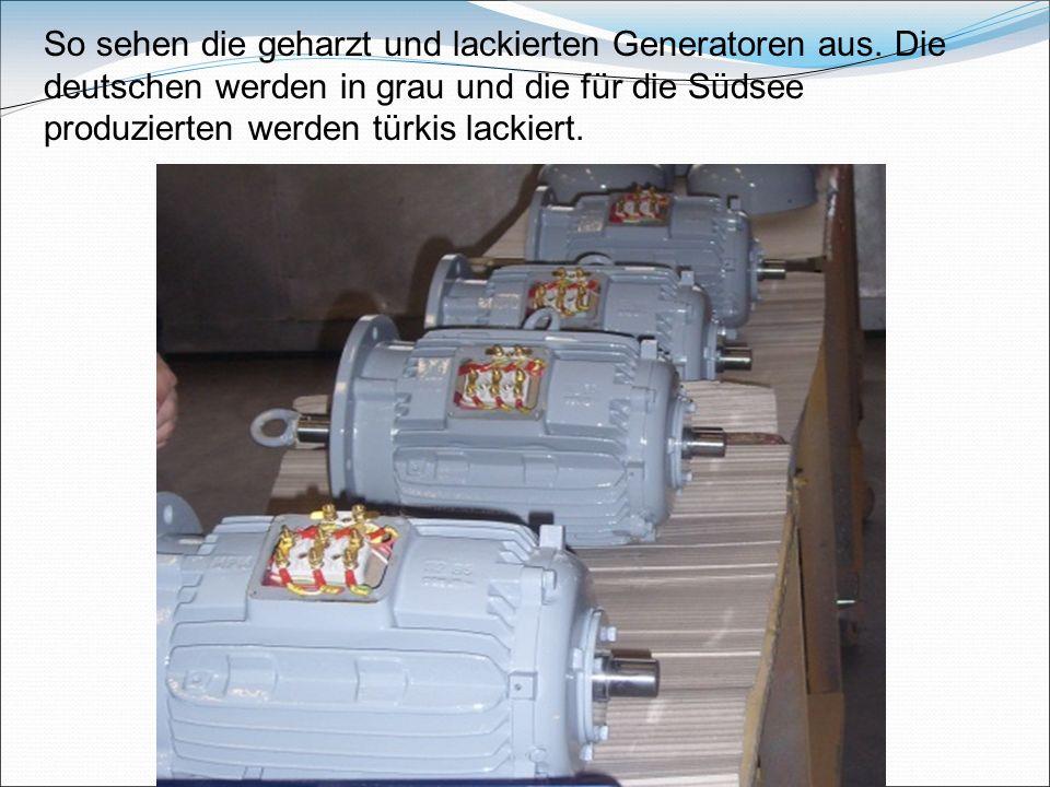 So sehen die geharzt und lackierten Generatoren aus.