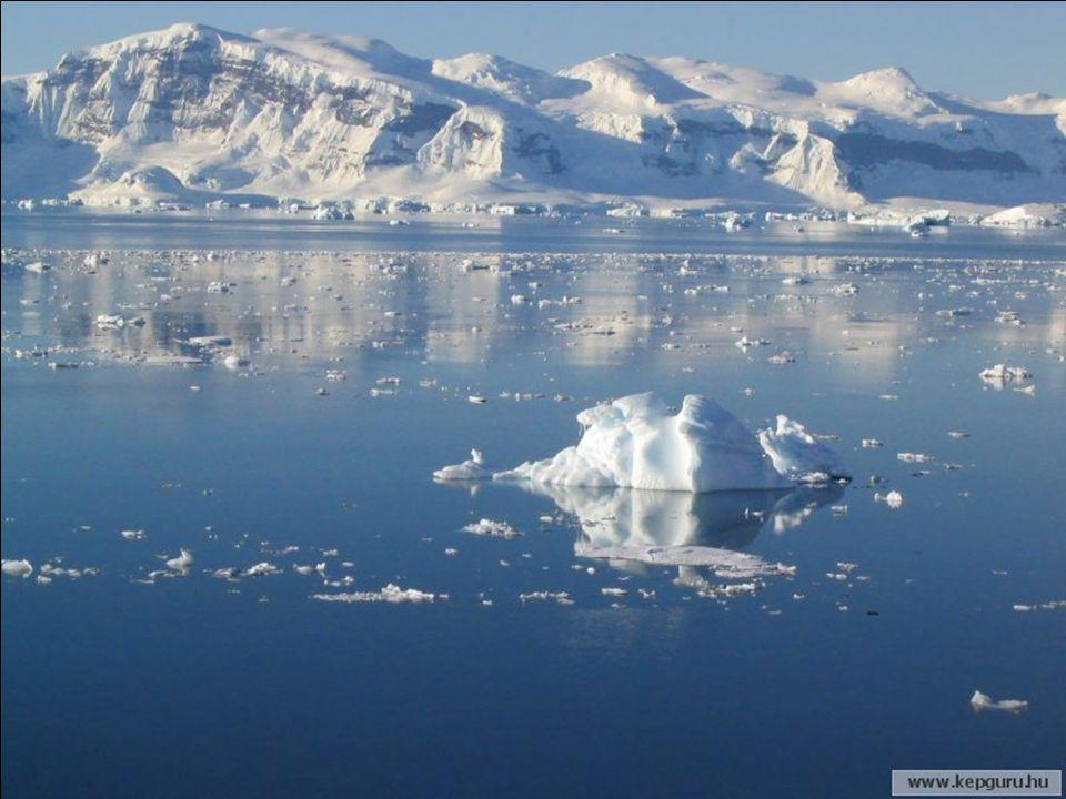 Die Antarktis spielt die Rolle des größten Gefrierschranks unserer Erde und reguliert die Strömungen der Ozeane und das gesamte Weltklima.