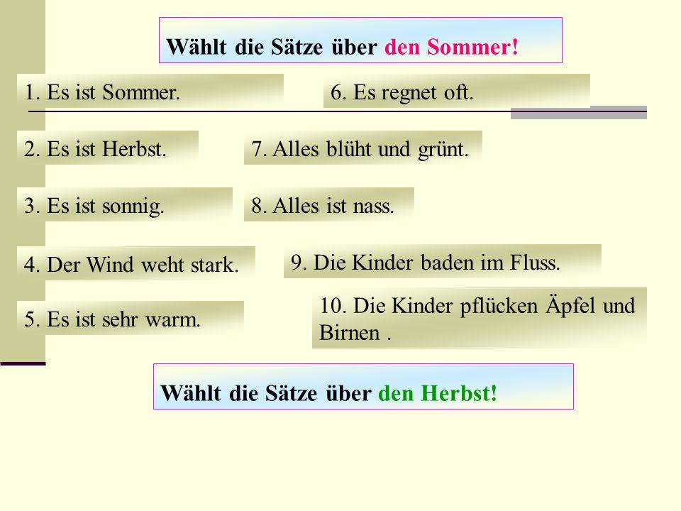 Wählt die Sätze über den Sommer.1. Es ist Sommer.