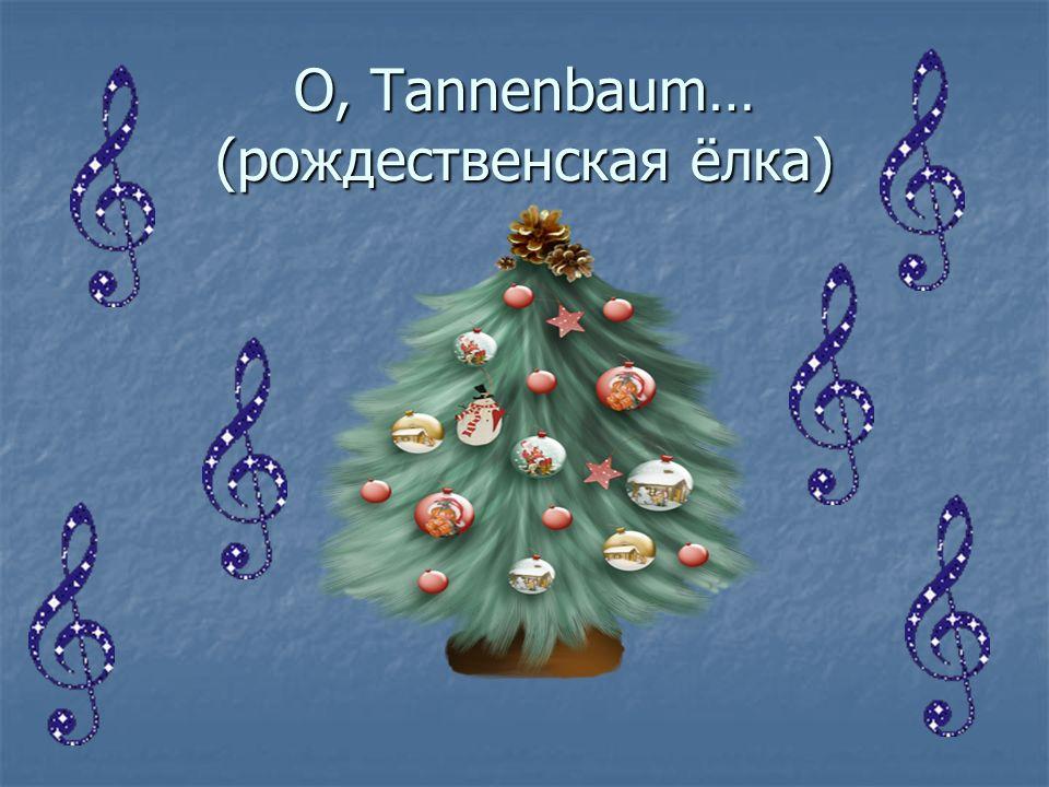 O, Tannenbaum… (рождественская ёлка)