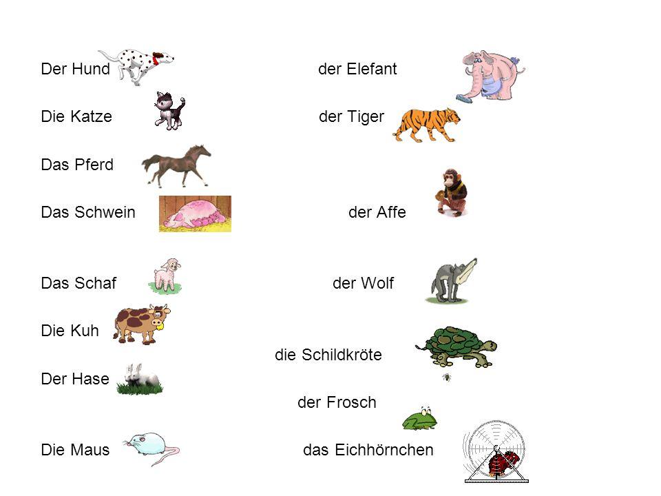 Der Hund der Elefant Die Katze der Tiger Das Pferd Das Schwein der Affe Das Schaf der Wolf Die Kuh die Schildkröte Der Hase der Frosch Die Maus das Ei
