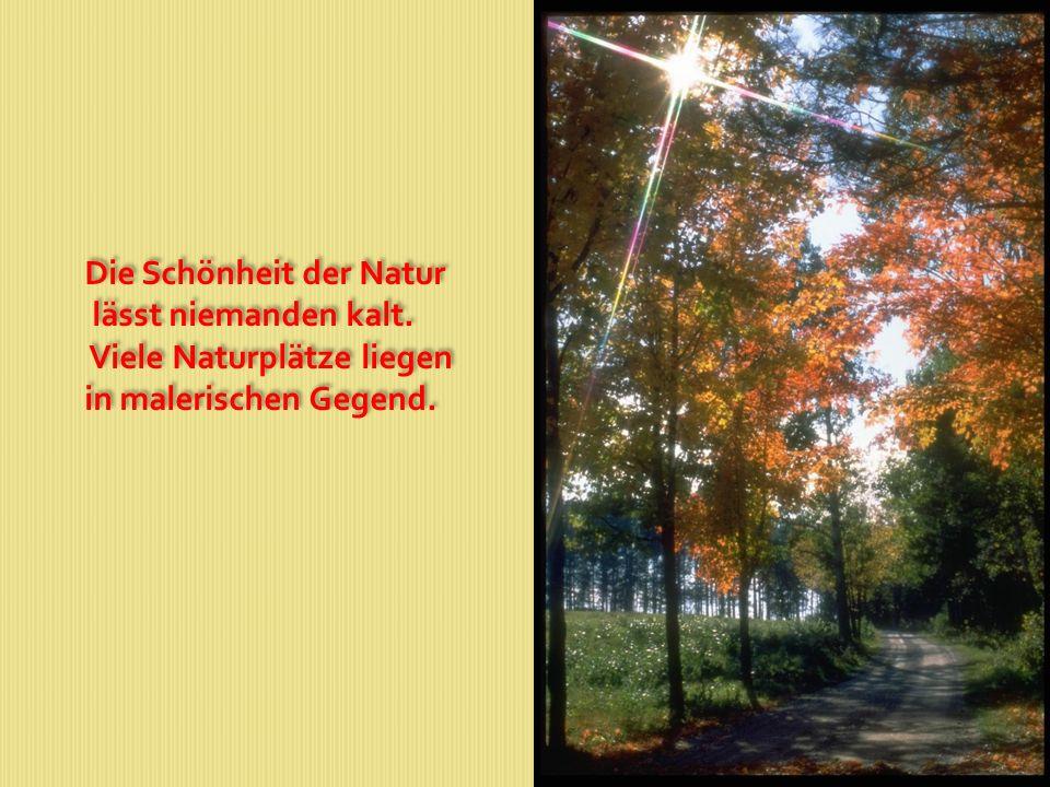 Die Schönheit der Natur lässt niemanden kalt. Viele Naturplätze liegen in malerischen Gegend. Die Schönheit der Natur lässt niemanden kalt. Viele Natu