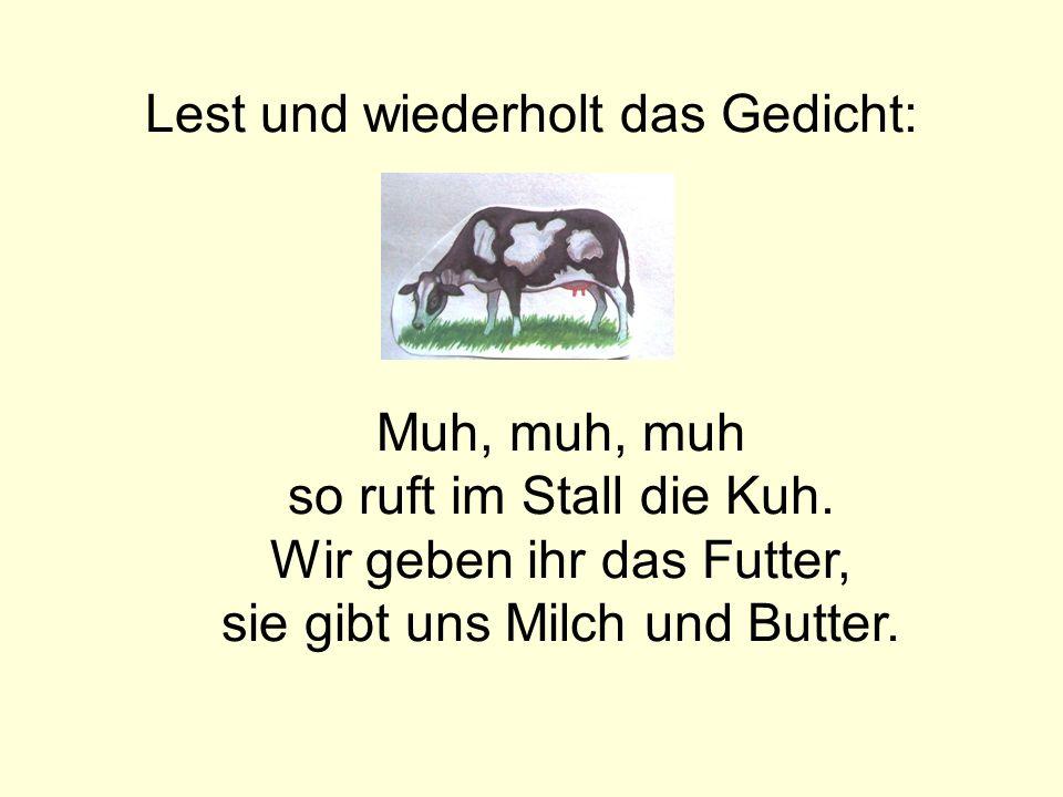 Lest und wiederholt das Gedicht: Muh, muh, muh so ruft im Stall die Kuh. Wir geben ihr das Futter, sie gibt uns Milch und Butter.