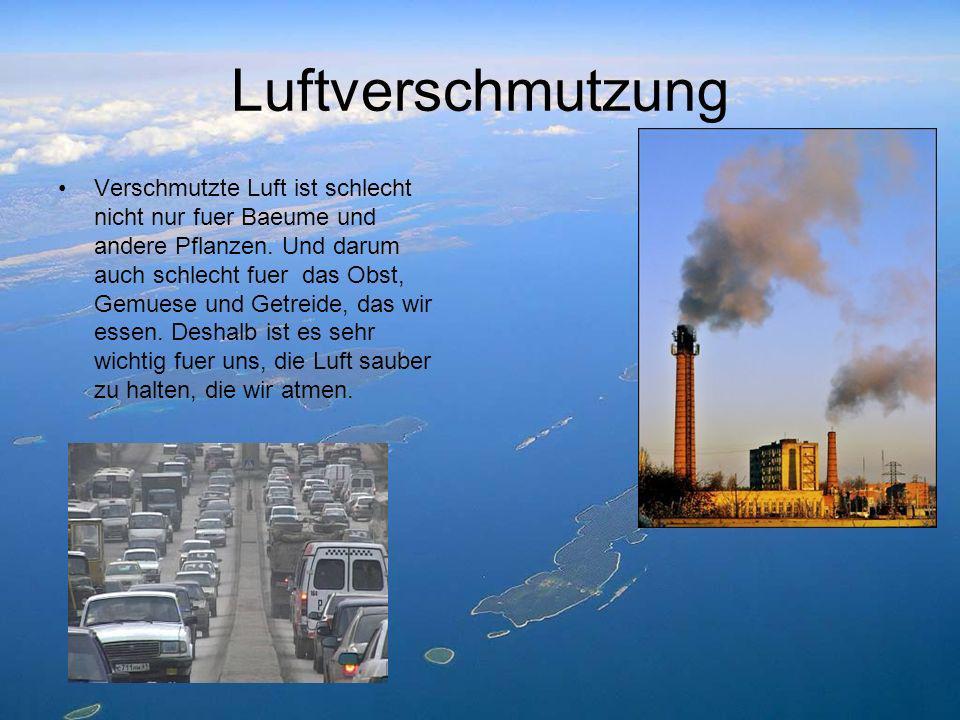 Luftverschmutzung Verschmutzte Luft ist schlecht nicht nur fuer Baeume und andere Pflanzen. Und darum auch schlecht fuer das Obst, Gemuese und Getreid