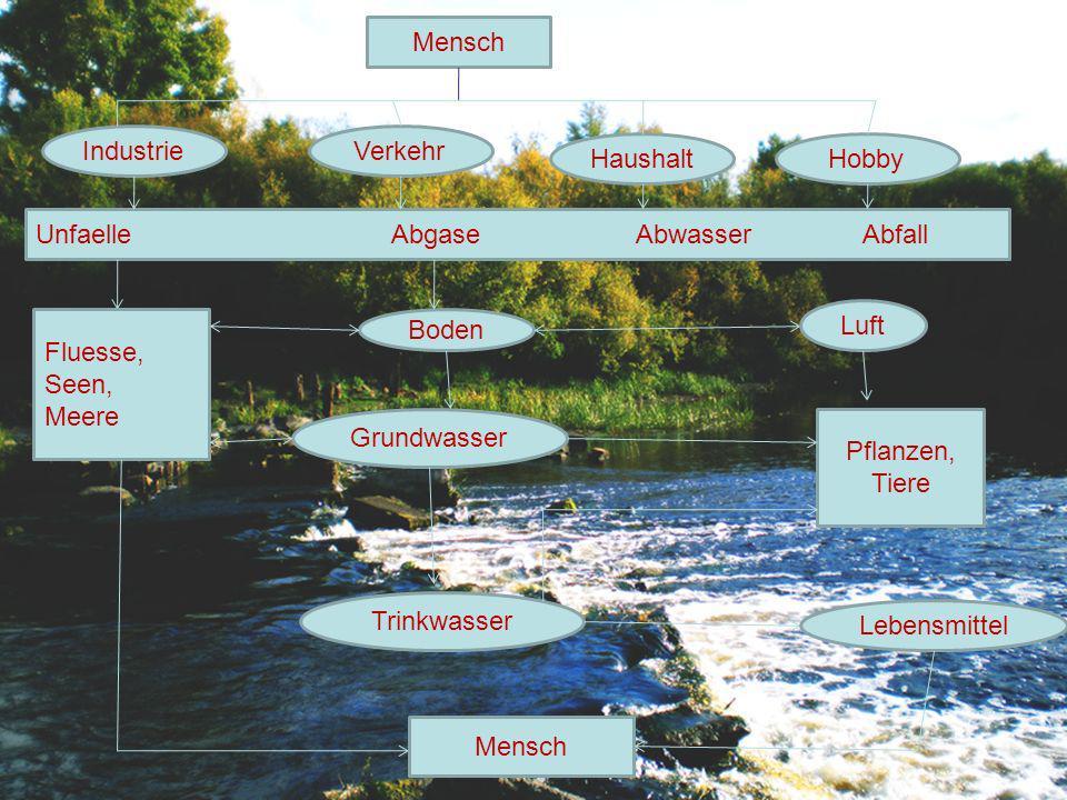 Mensch IndustrieVerkehr HaushaltHobby Unfaelle Abgase Abwasser Abfall Fluesse, Seen, Meere Boden Grundwasser Mensch Trinkwasser Luft Pflanzen, Tiere L
