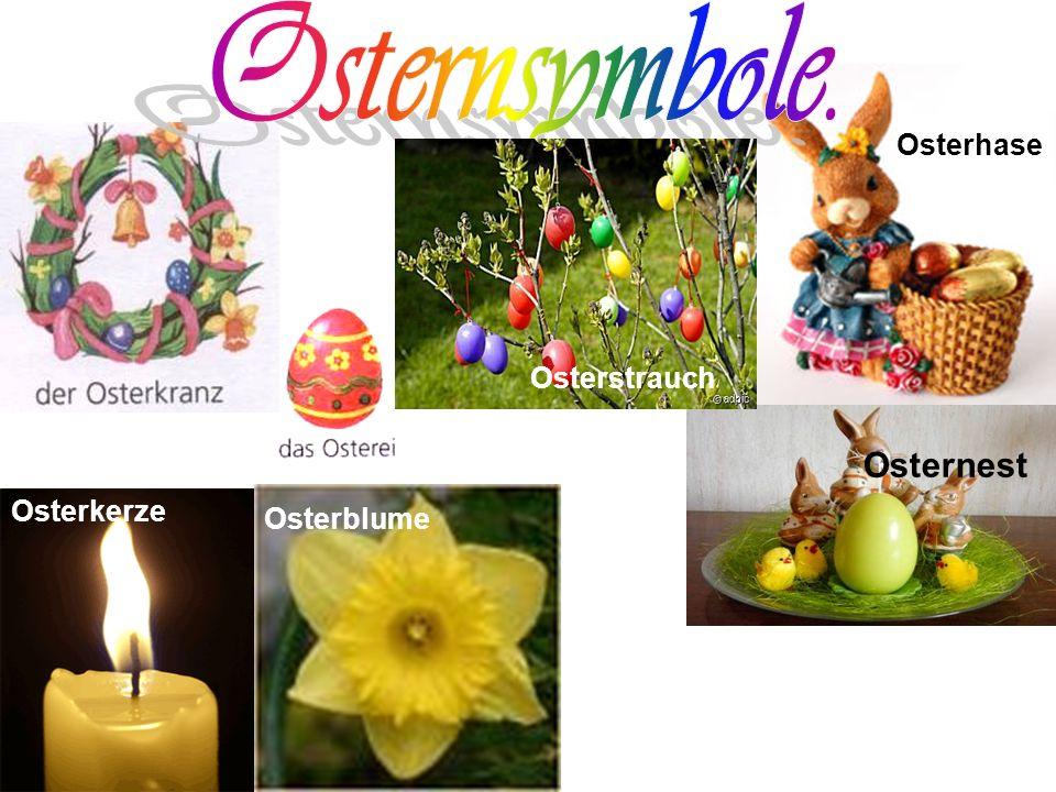 Osterhase Osternest Osterstrauch Osterkerze Osterblume