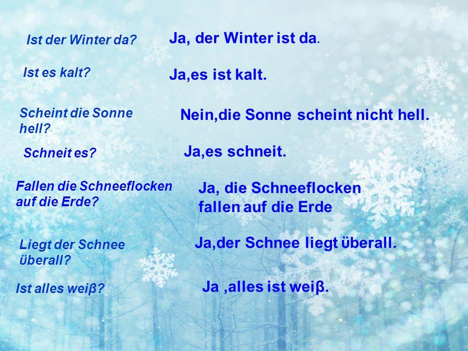 Ist es kalt? Ist der Winter da? Ja, der Winter ist da. Ja,es ist kalt. Scheint die Sonne hell? Nein,die Sonne scheint nicht hell. Schneit es? Ja,es sc