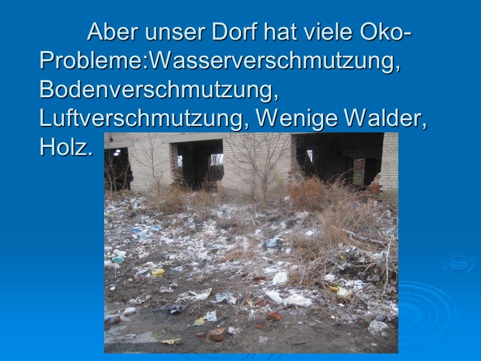 Aber unser Dorf hat viele Oko- Probleme:Wasserverschmutzung, Bodenverschmutzung, Luftverschmutzung, Wenige Walder, Holz.