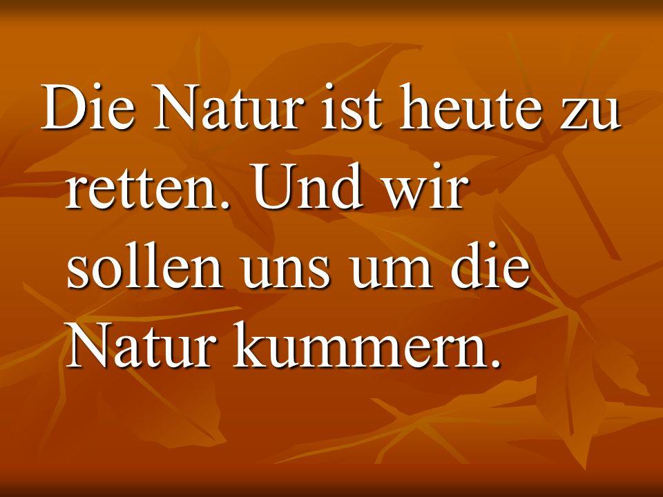 Die Natur ist heute zu retten. Und wir sollen uns um die Natur kummern.