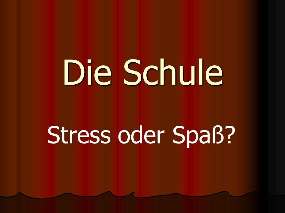 Die Schule Stress oder Spaß?