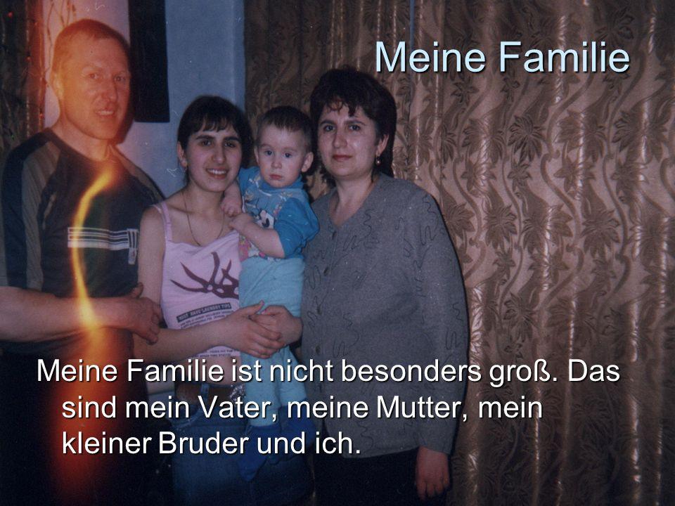 Meine Familie Meine Familie ist nicht besonders groß. Das sind mein Vater, meine Mutter, mein kleiner Bruder und ich.