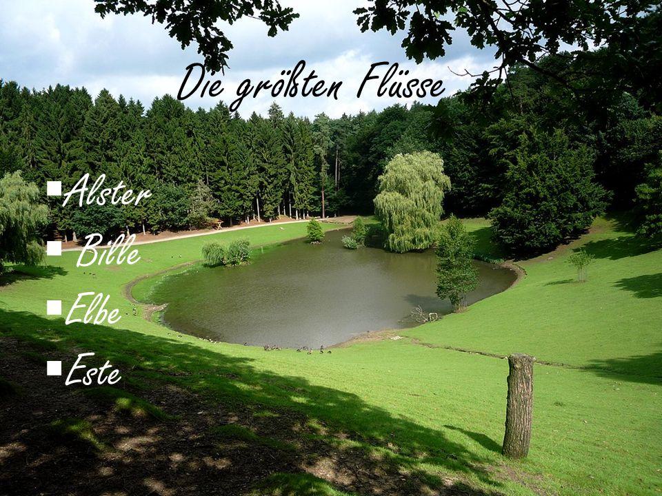 Alster Bille Elbe Este Die größten Flüsse