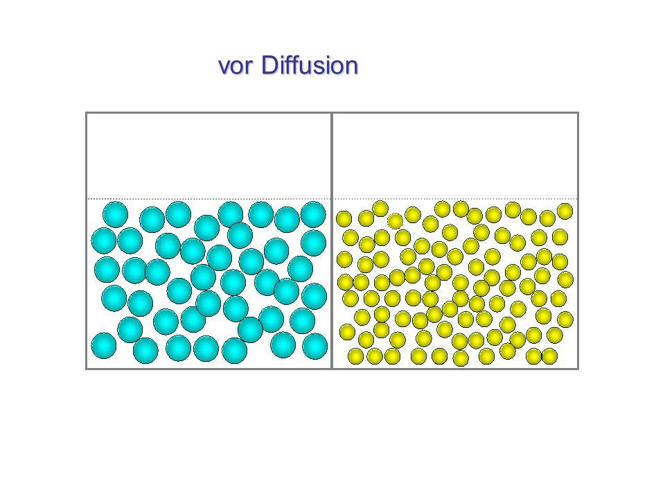 vor Diffusion vor Diffusion