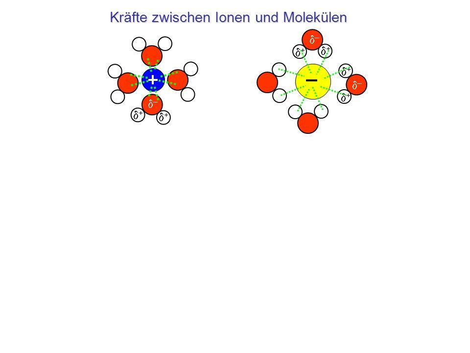 Kräfte zwischen Ionen und Molekülen – – + + + – – + +