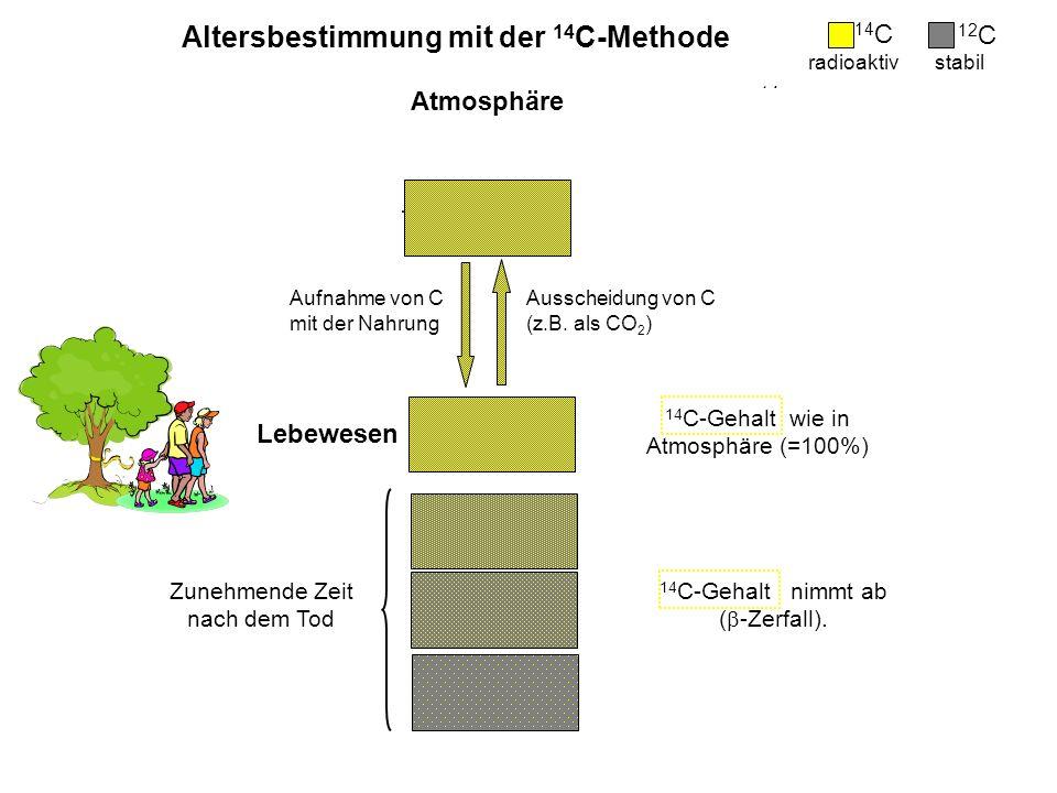 Bildung von 14 C -Zerfall von 14 C Altersbestimmung mit der 14 C-Methode kosmische Höhenstrahlung Zunehmende Zeit nach dem Tod 14 C-Gehalt nimmt ab (