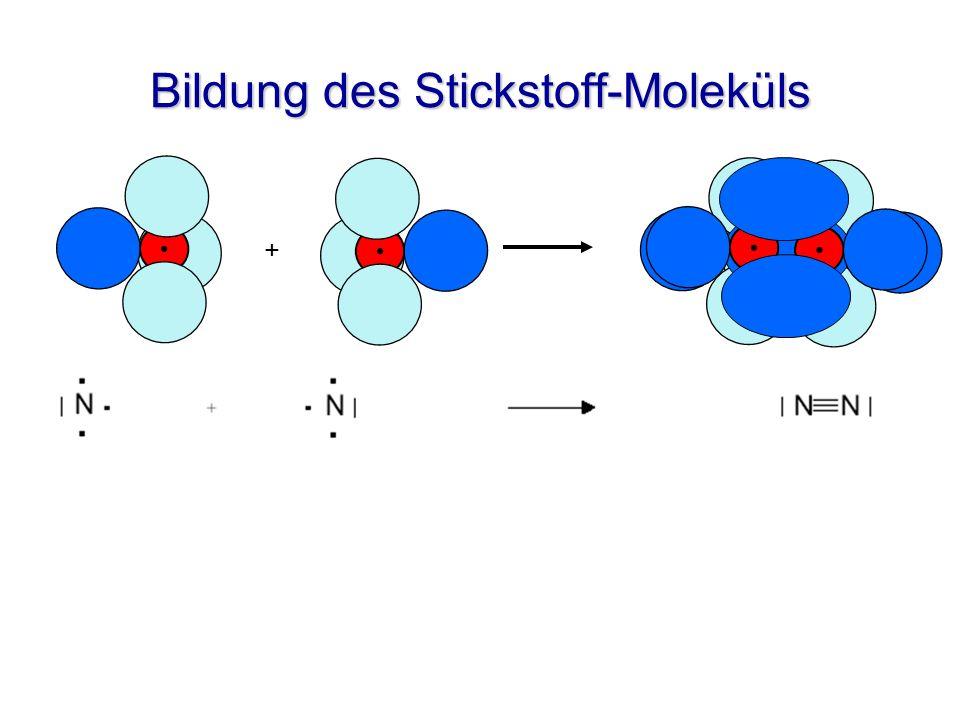 Bildung des Stickstoff-Moleküls +