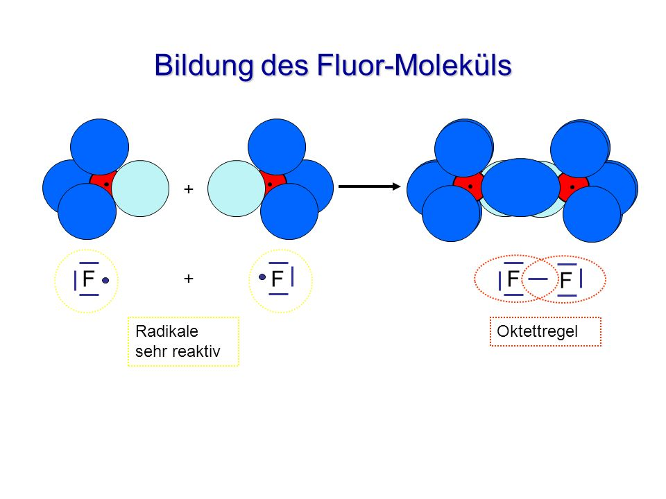 Bildung des Fluor-Moleküls F + F + F F OktettregelRadikale sehr reaktiv