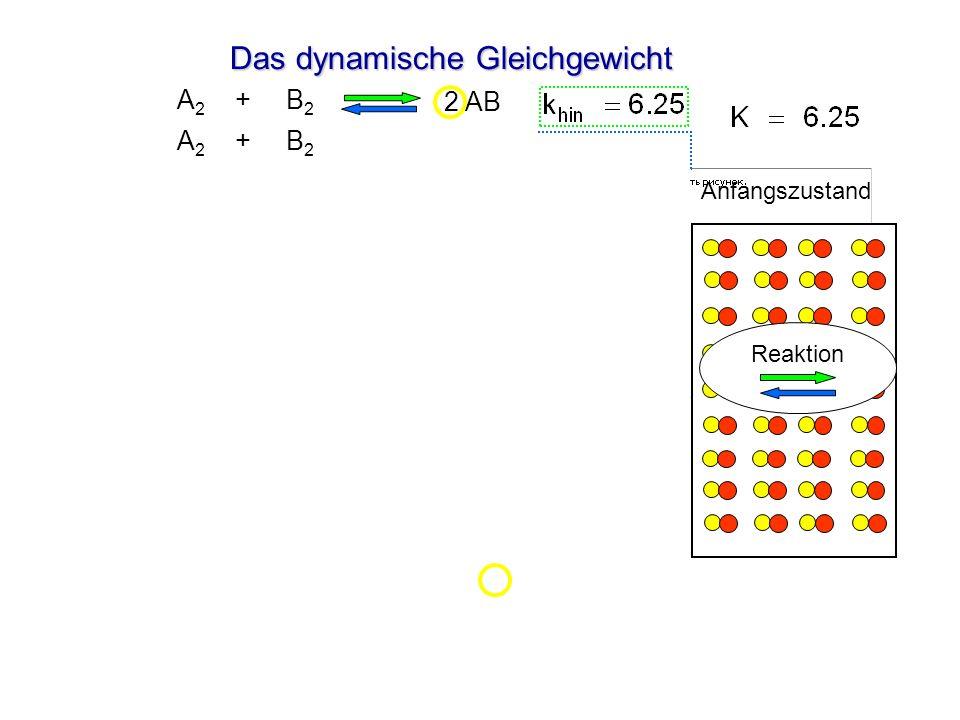 Das dynamische Gleichgewicht Anfangszustand 2 AB A 2 + B 2 2 AB A 2 + B 2 Gleichgewicht Reaktion