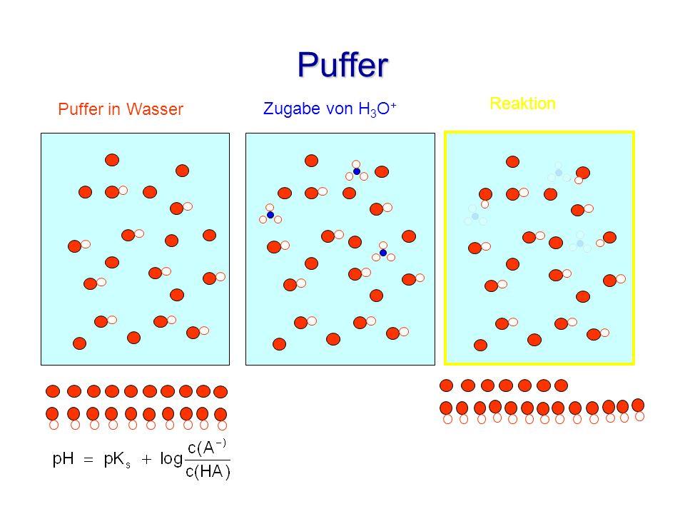 Puffer Zugabe von H 3 O + Reaktion Puffer in Wasser
