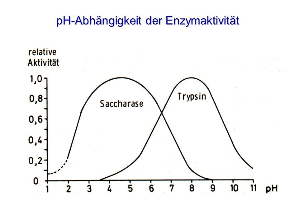 pH-Abhängigkeit der Enzymaktivität