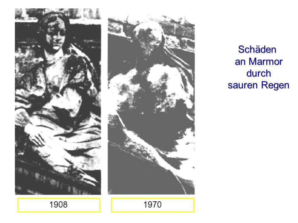 Schäden an Marmor durch sauren Regen 19081970