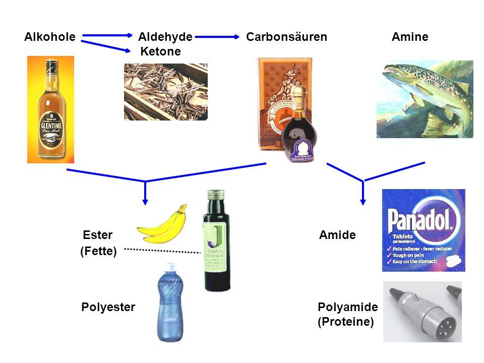 Alkohole Aldehyde Carbonsäuren Amine Ketone Polyester Ester Polyamide (Proteine) Amide (Fette)