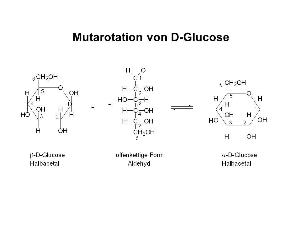 Mutarotation von D-Glucose OH