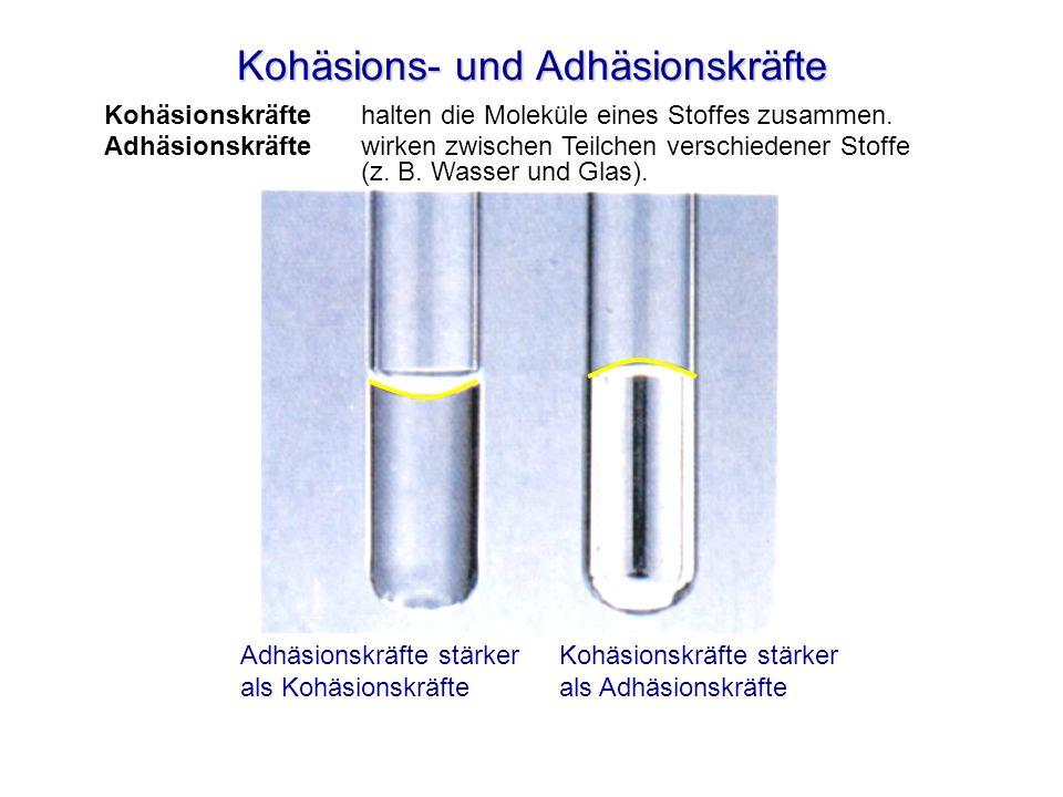 Kohäsions- und Adhäsionskräfte Kohäsionskräfte halten die Moleküle eines Stoffes zusammen. Adhäsionskräfte wirken zwischen Teilchen verschiedener Stof