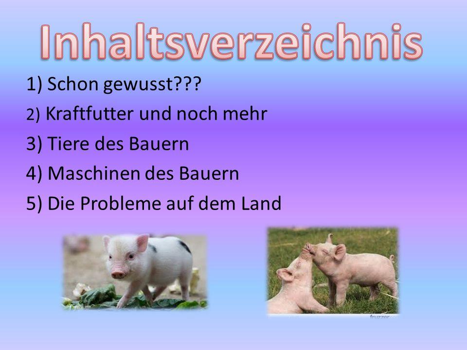 1) Schon gewusst??? 2) Kraftfutter und noch mehr 3) Tiere des Bauern 4) Maschinen des Bauern 5) Die Probleme auf dem Land