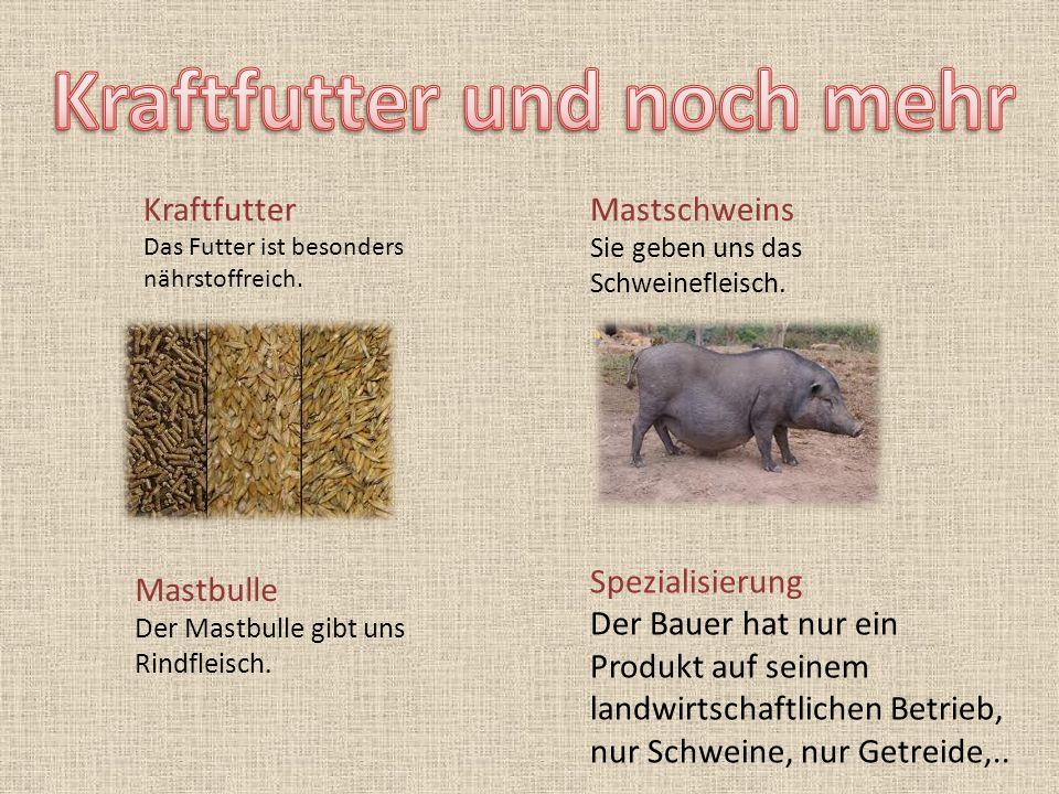 Kraftfutter Das Futter ist besonders nährstoffreich. Mastschweins Sie geben uns das Schweinefleisch. Mastbulle Der Mastbulle gibt uns Rindfleisch. Spe